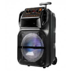 DHG E343 ALTAVOZ RADIO GR